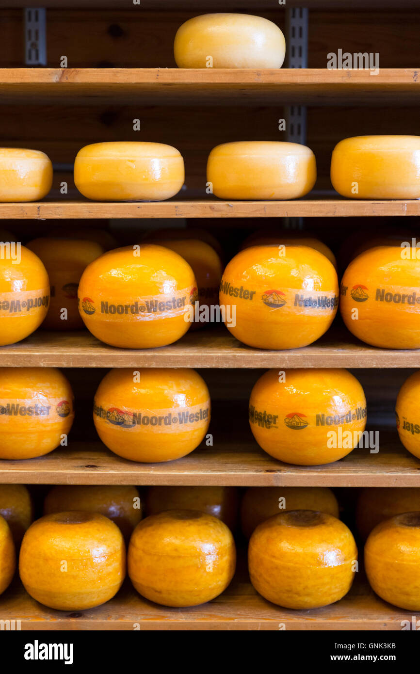 Edam cheese Noord Wester display on shelves in food store in the town of Edam, The Netherlands - Stock Image