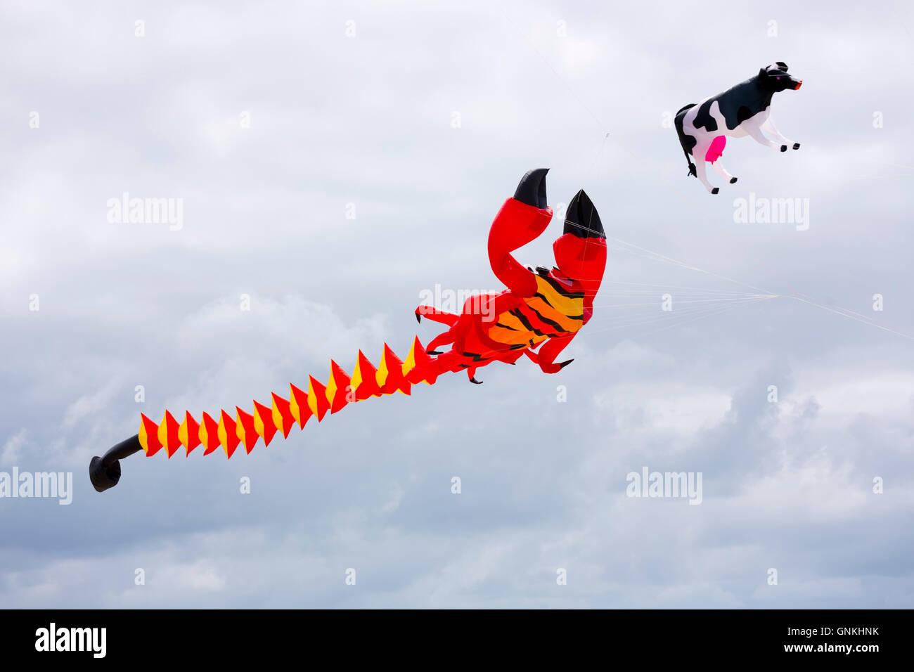 Kite festival of bright color kites and lobster kite in the sky above Fano Island - Fanoe - South Jutland, Denmark - Stock Image