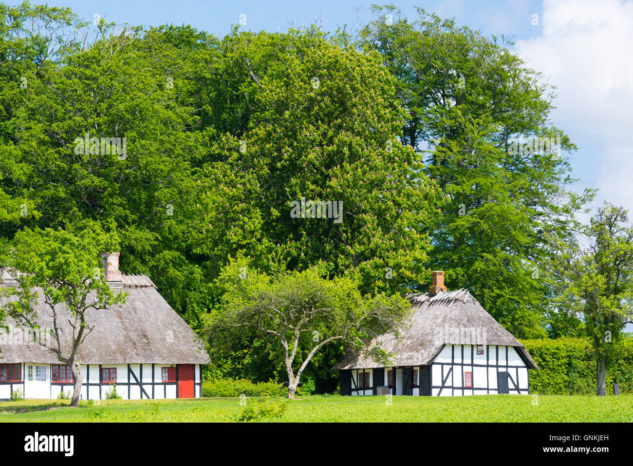 Quaint traditional half-timbered thatch cottages at Egeskov in south of the island of Funen, Denmark - Stock Image