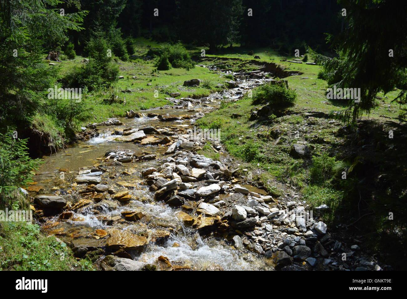 A mountain river through a glade - Stock Image