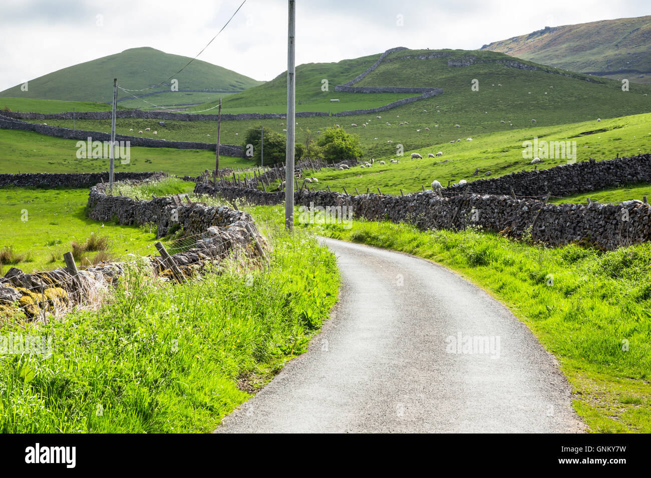 Country lane in Yorkshire Dales, National Park Stock Photo