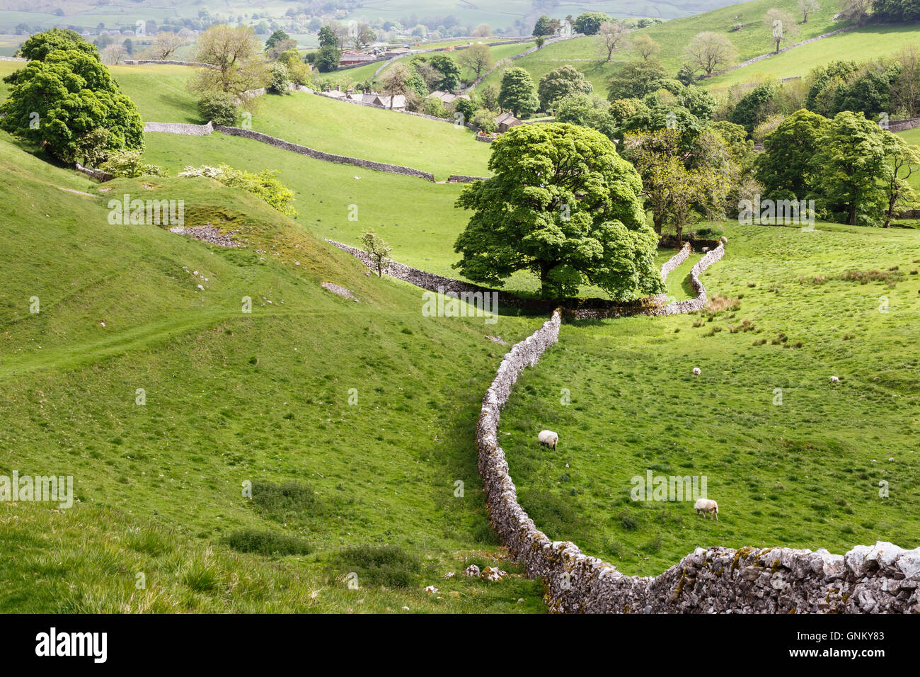 Looking towards the village of Thorpe in the Yorkshire Dales Stock Photo