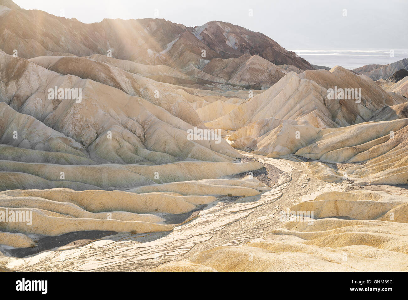 The desert in Death Valley National Park - Stock Image