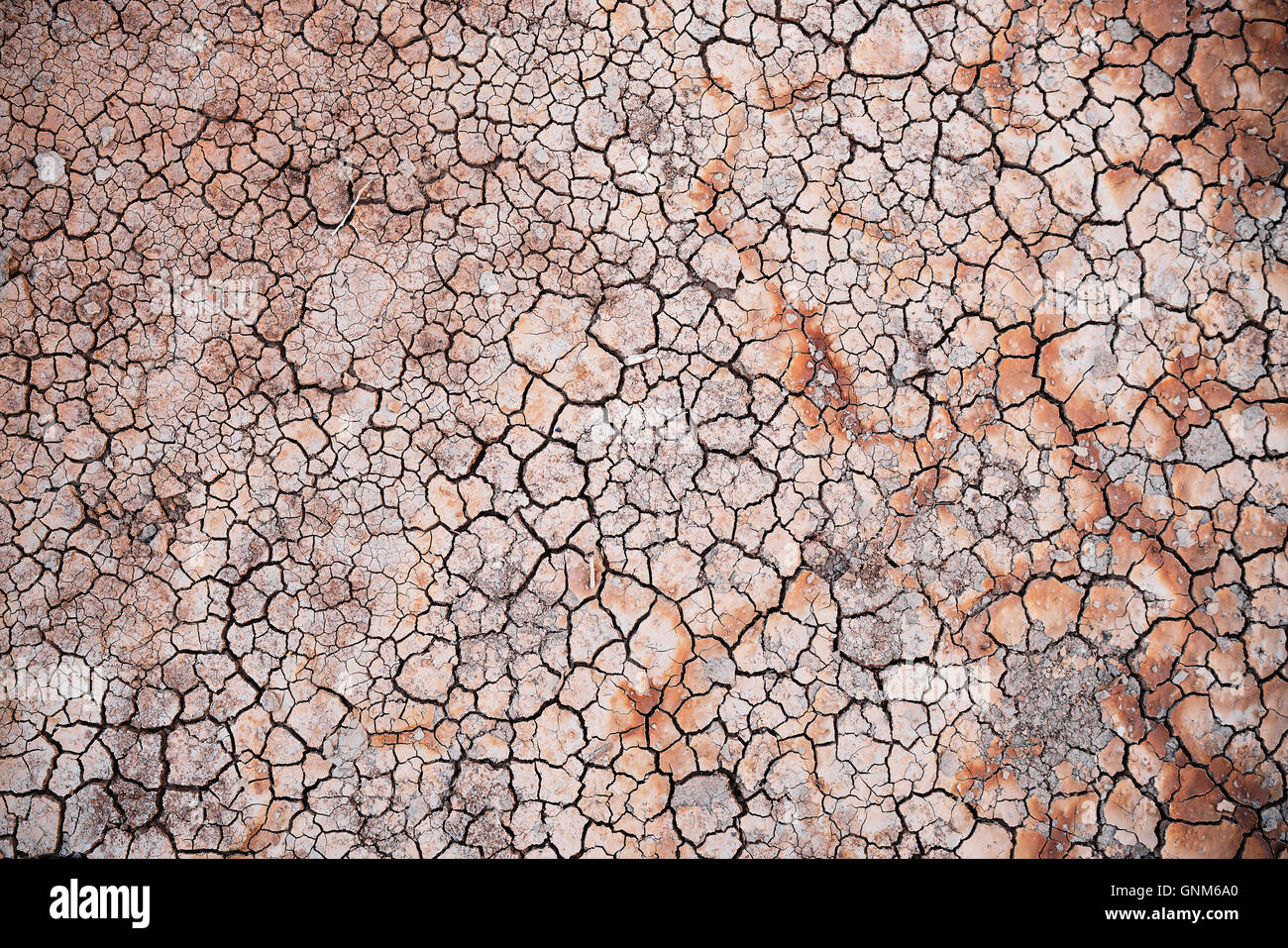 Cracks in the clay ground in Death Valley National Park - Stock Image