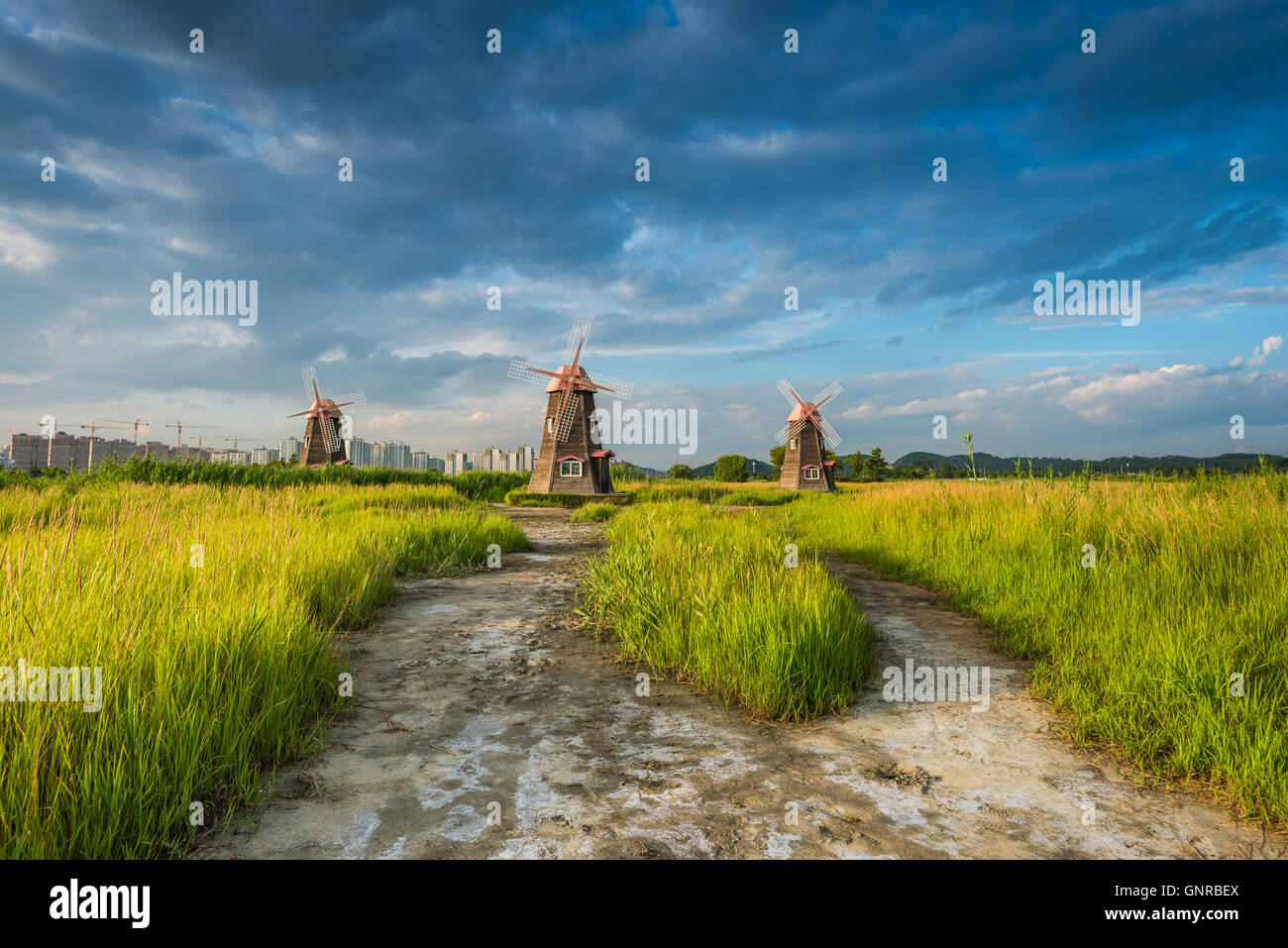 Old wooden mills the field in the park,south korea - Stock Image