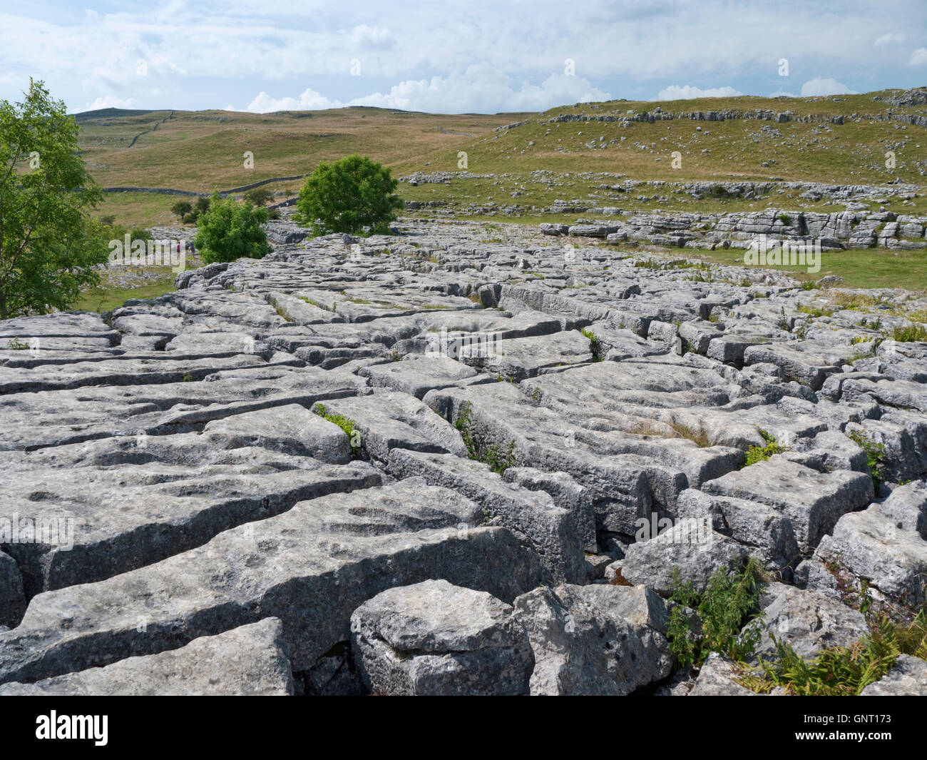 The clints and grykes of a limestone pavement above Malham Cove, outside the village of Malham, Yorkshire Dales - Stock Image