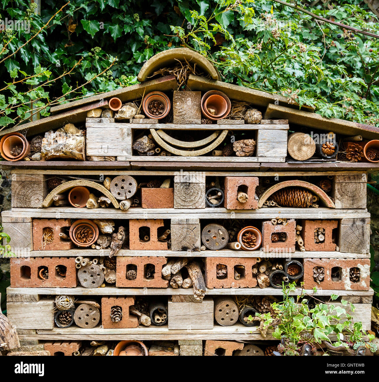 A fun bug hotel designed to attract bugs, insects and minibeasts in ...