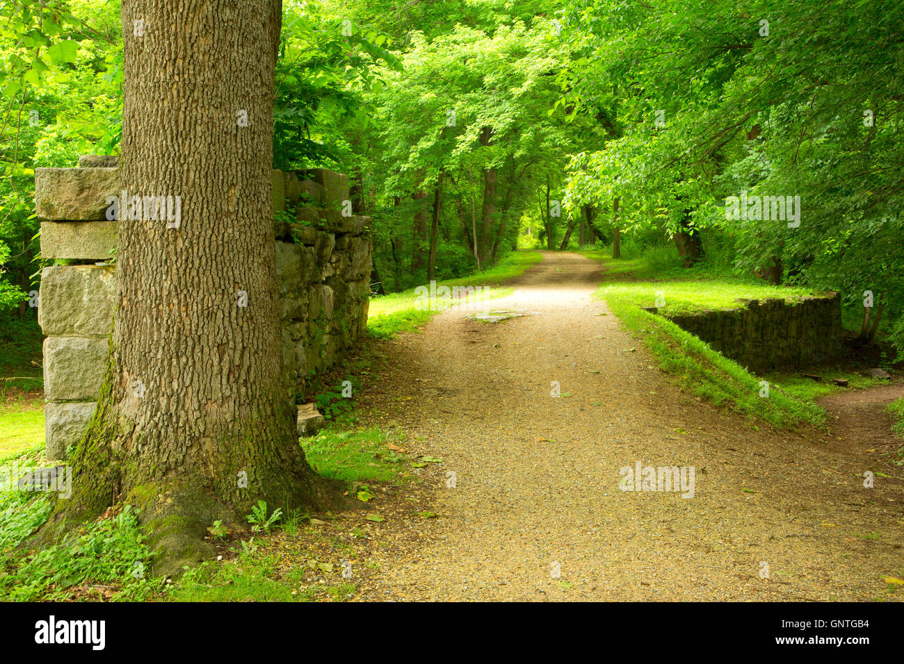 Towpath at Lock 38, Chesapeake and Ohio Canal National Historical Park, Maryland - Stock Image