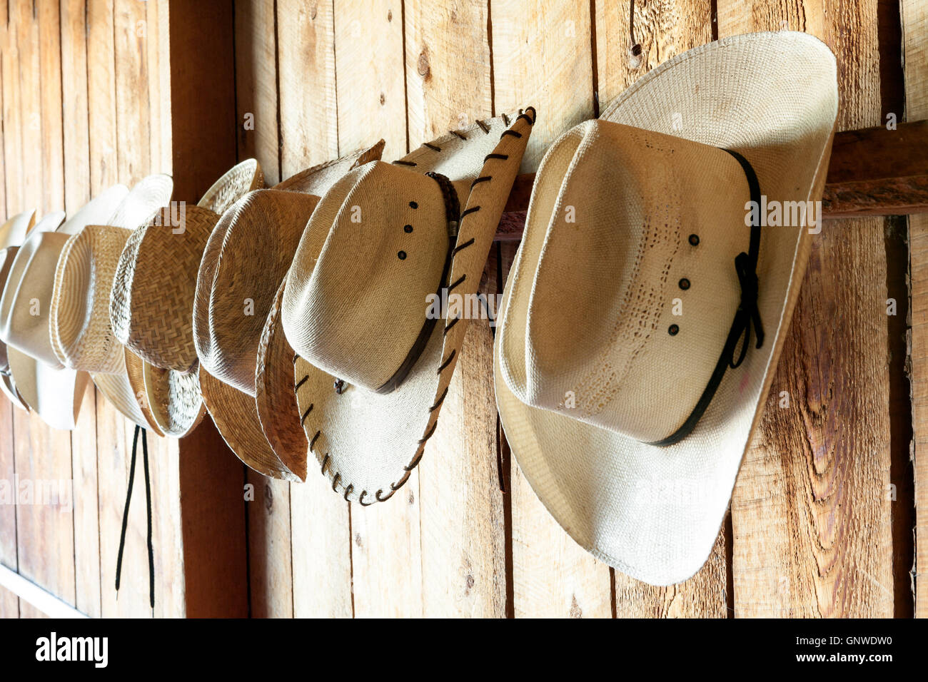 WY00980-00...WYOMING - Hats hung up in the hat and boot room at the CM Ranch near Dubois. - Stock Image