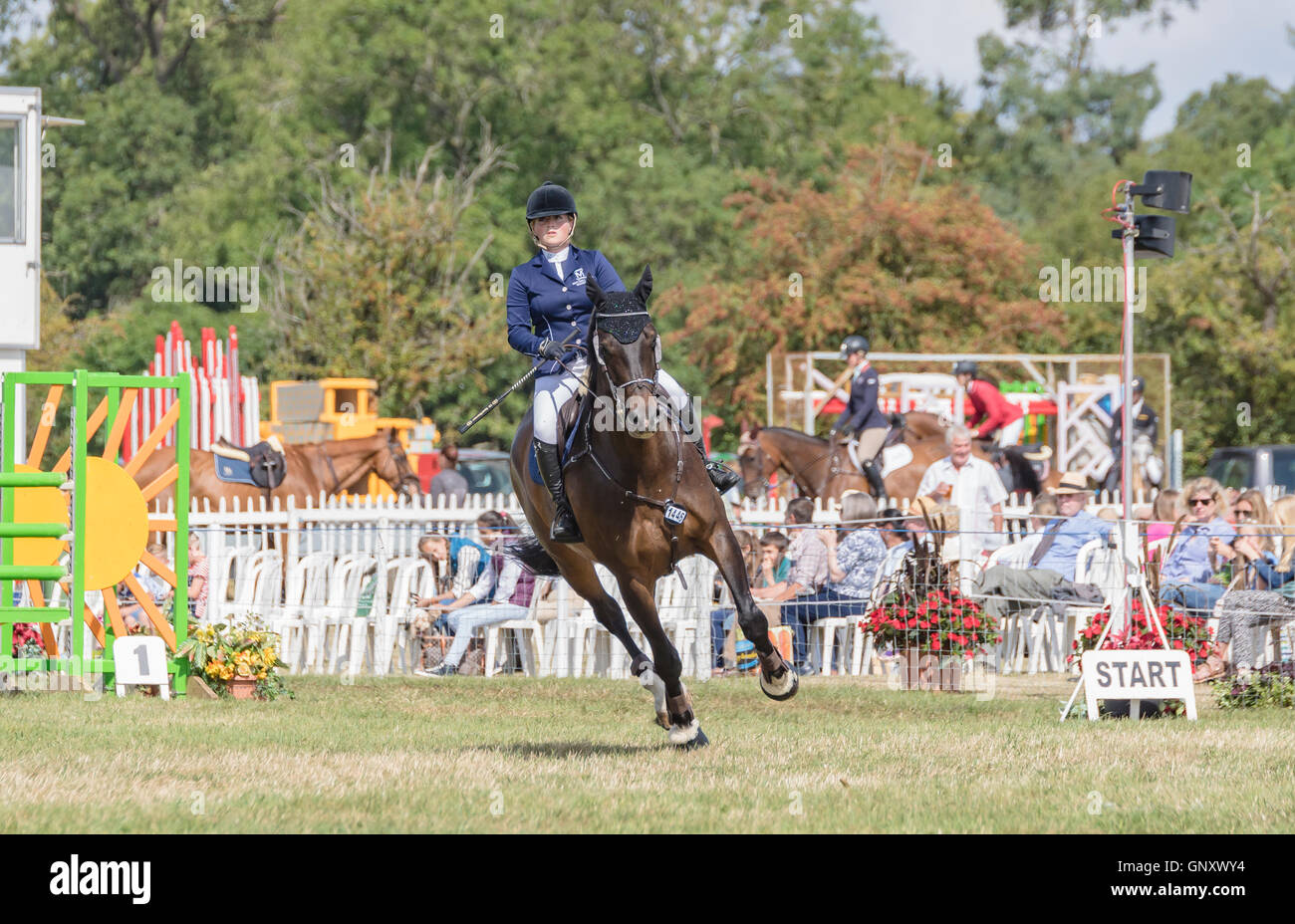 The Bucks County Show, Area Trial showjumping Ridden Hunter Championship Credit:  Scott Carruthers/Alamy Live News - Stock Image