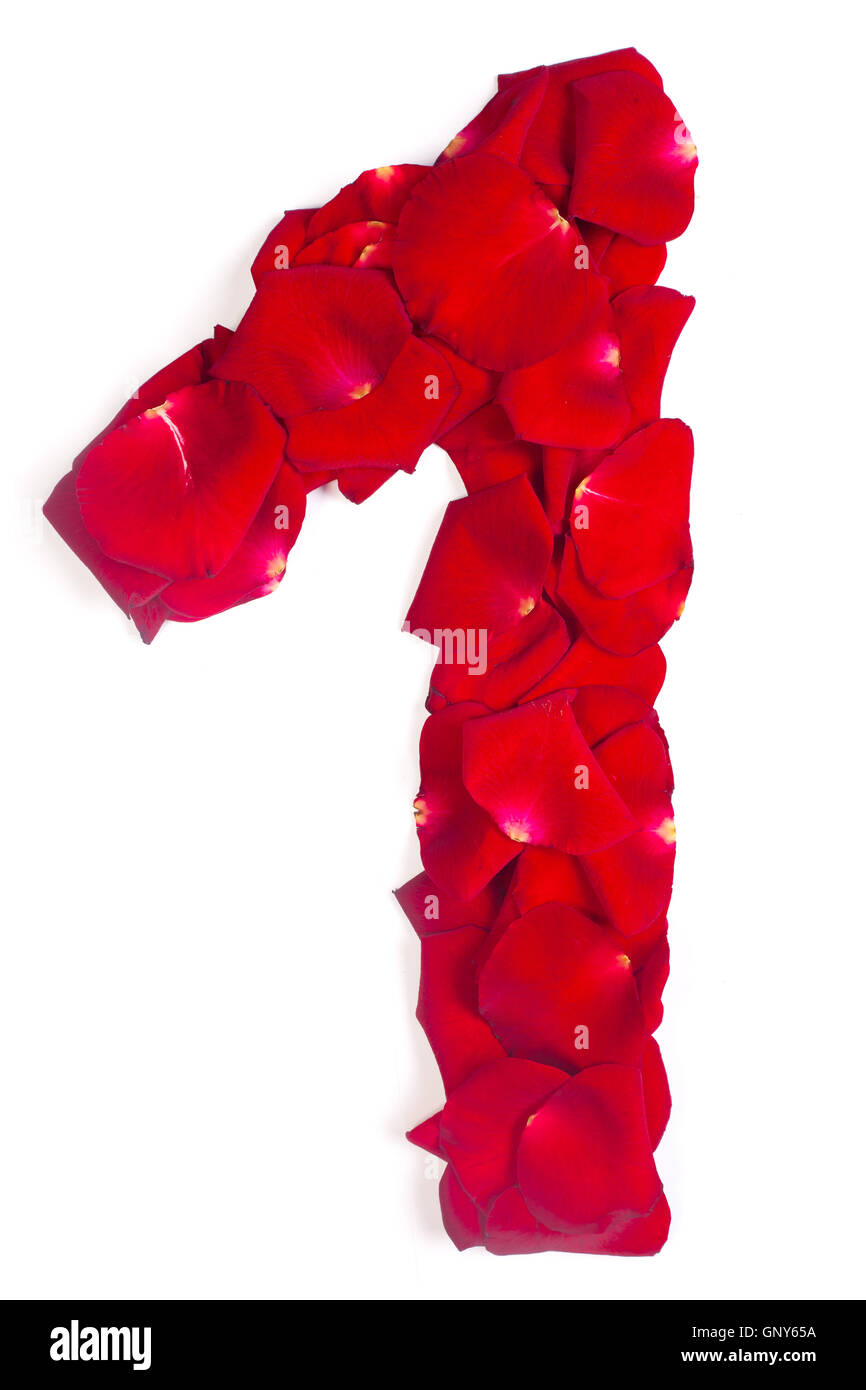 number 1 made from red petals rose on white - Stock Image