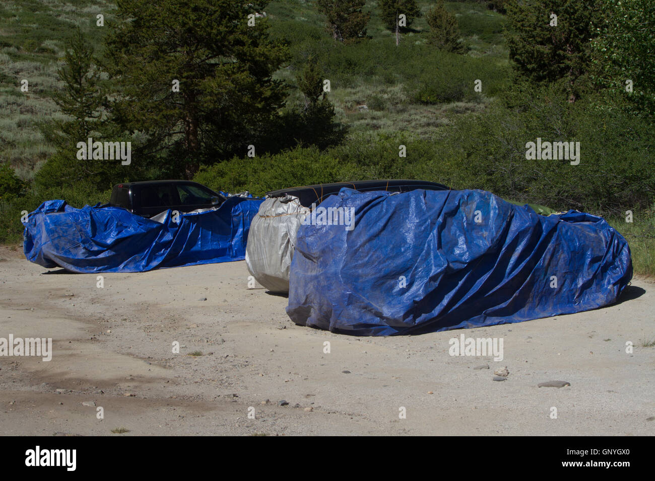 Vehicles protected with trapouline or wire to prevent marmots from damaging pipes etc. California. USA - Stock Image