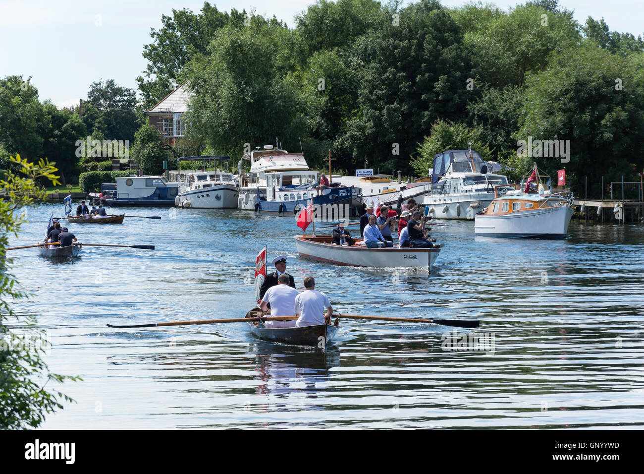 Swan Upping boats and skiffs on Thames River at Lalham Reach, Laleham, Surrey, England, United Kingdom - Stock Image