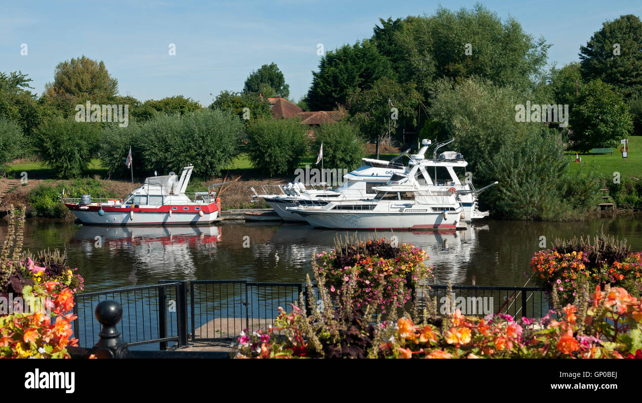 Cabins cruisers mooed on the River Severn, Upton-upon-Severn, Worcestershire, England, UK - Stock Image