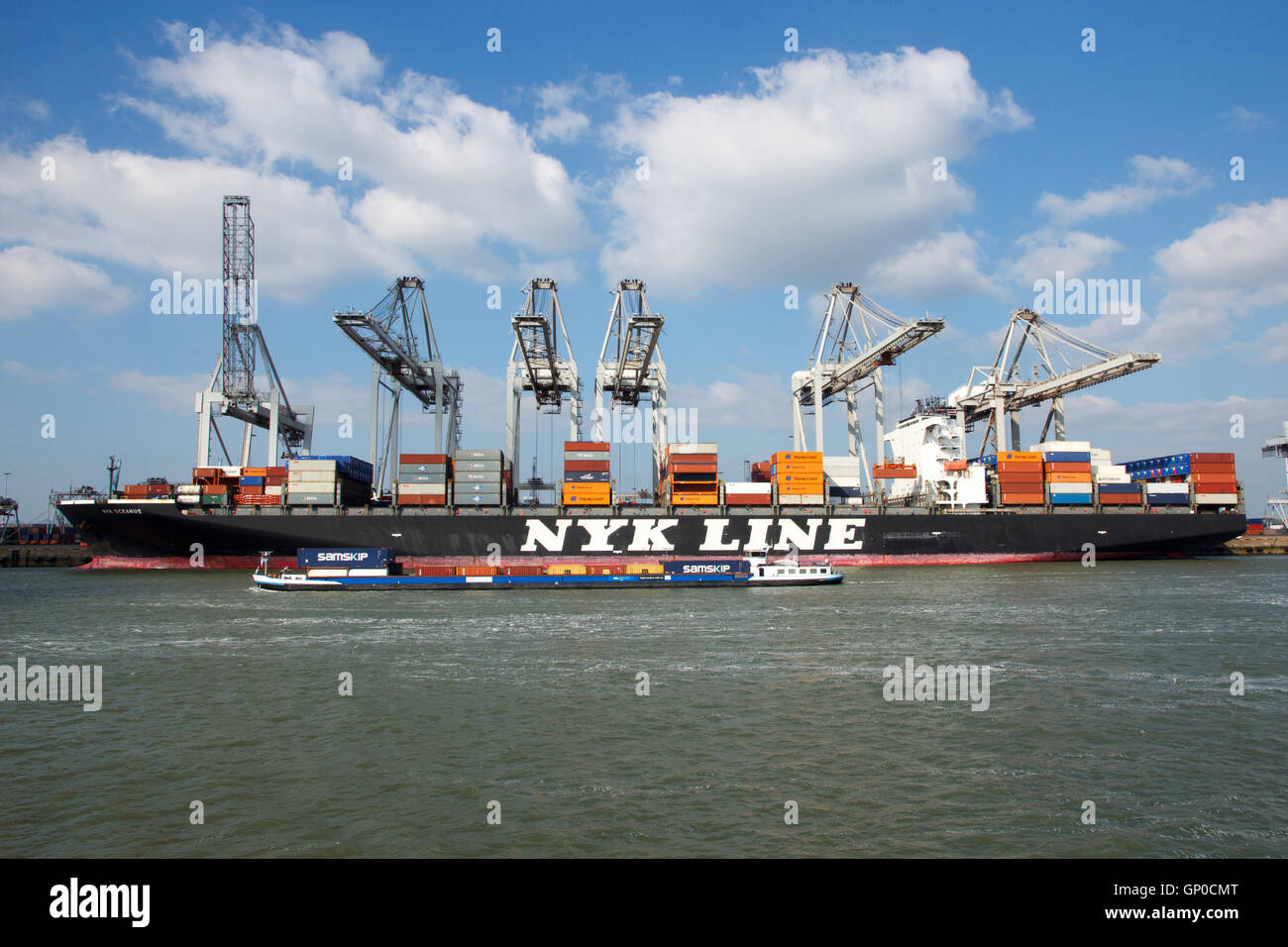 Container ship Nyk Oceanus from NYK Line moored at a container terminal in the Port of Rotterdam - Stock Image