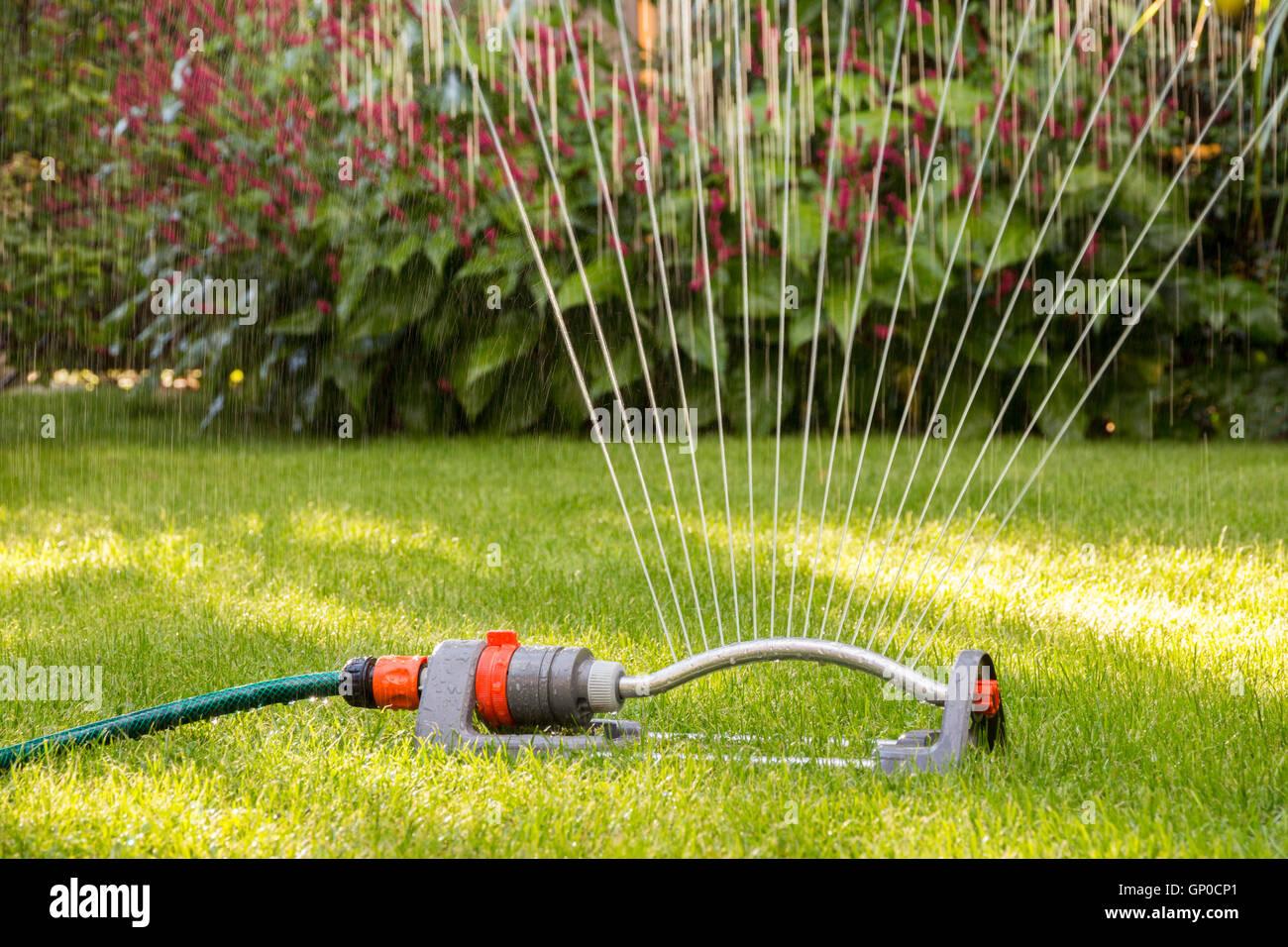 Sprinkler Watering Lawn Close Up Stock Photos Sprinkler