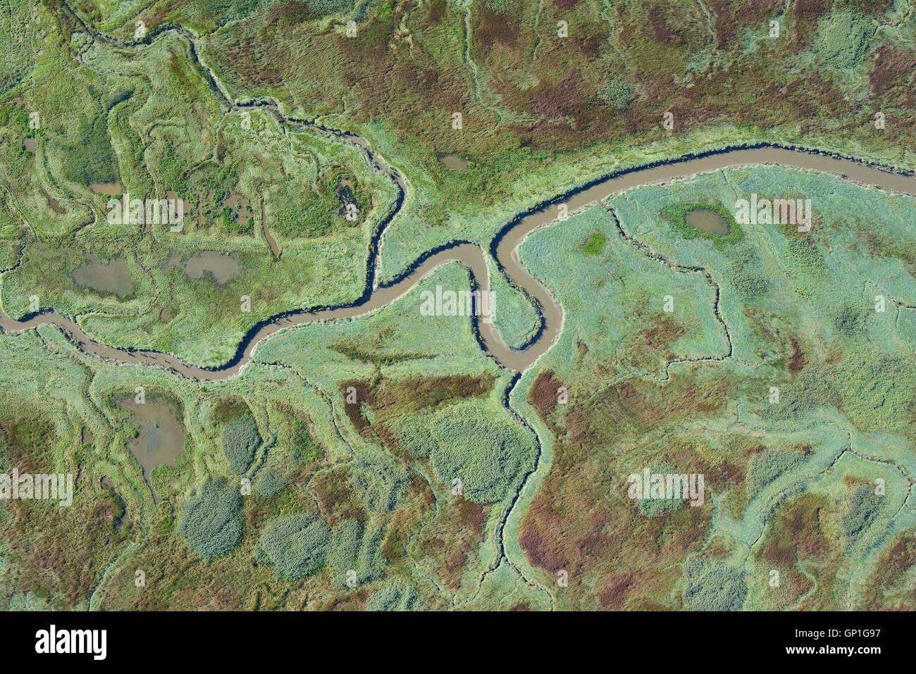 SALT MARSH WILDERNESS ON THE SCHELDT ESTUARY (aerial view). Verdronken Land van Saeftinghe, Zeeland, Netherlands. - Stock Image