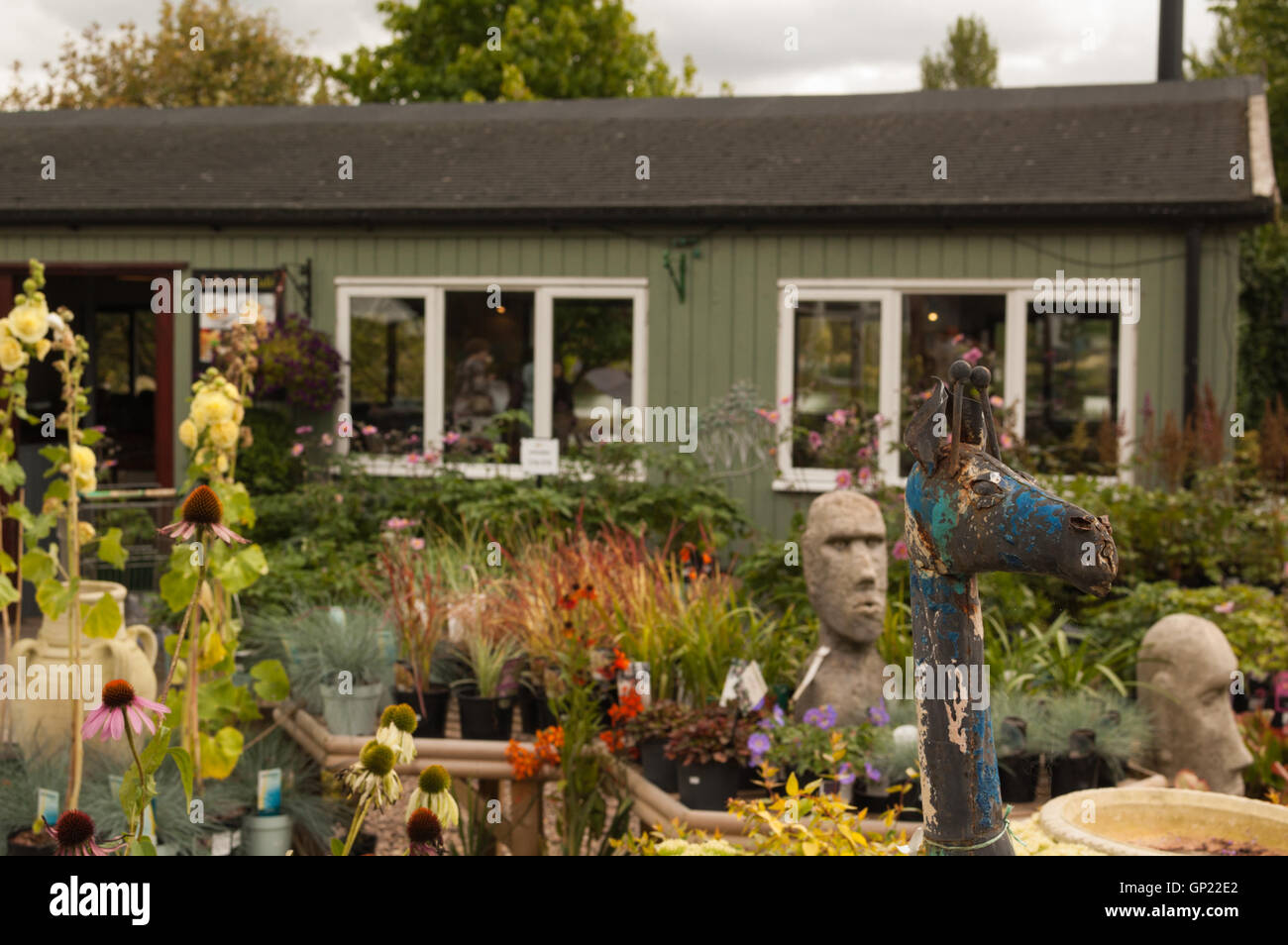 Garden centre visitors Flowers and buildings perennials and colours - Stock Image