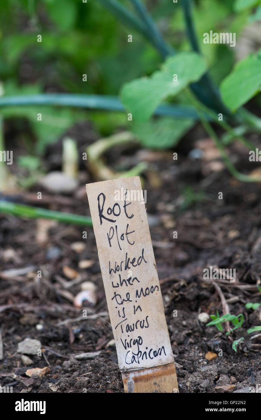 Root plot, Lunar gardening sign at Ryton Organic gardens, Warwickshire, England - Stock Image