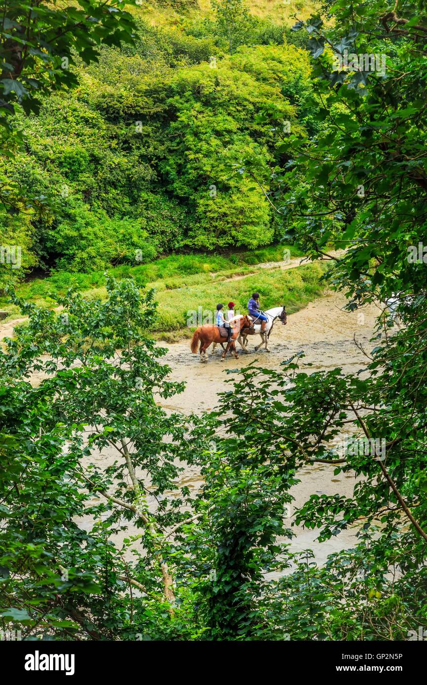 A view of pony trekking in the River Gannel estuary near Newquay in Cornwall, England, UK - Stock Image