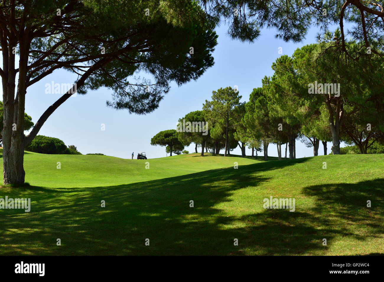 Golf buggy on green slopes of Cascatas Golf Resort & Spa, Vilamoura, Algarve, south Portugal - Stock Image