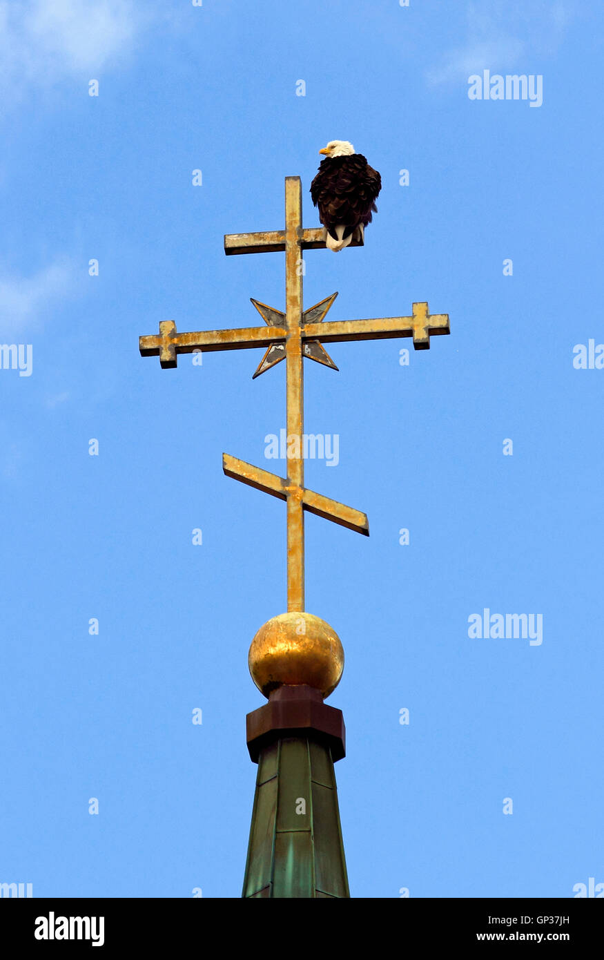 Bald Eagle On Dome And Steeple Cross St Michaels Russian Orthodox