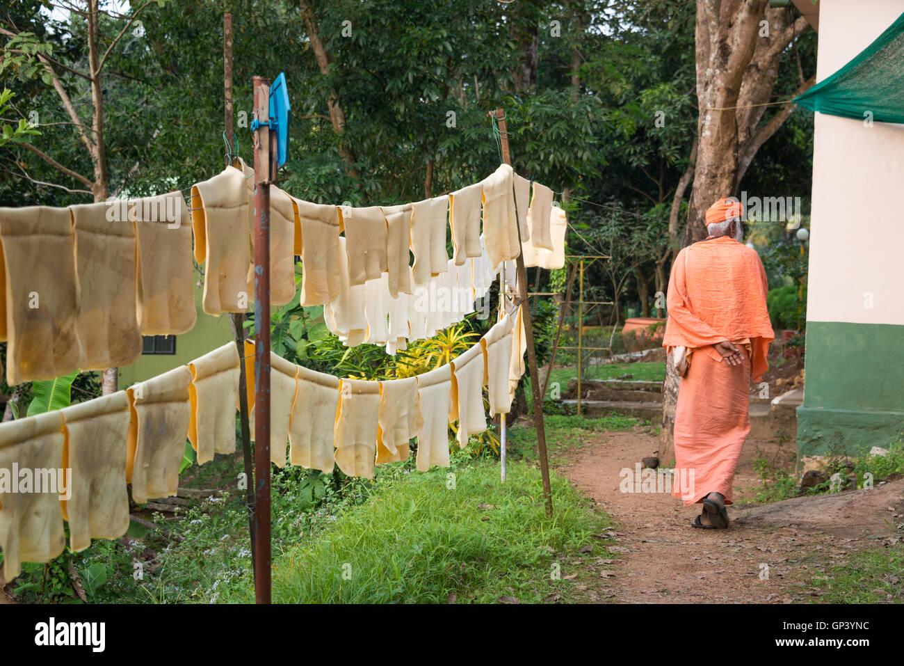Rubber tapping at Sivananda Yoga Vedanta Dhanwantari Ashram, Neyyardam, India - Stock Image