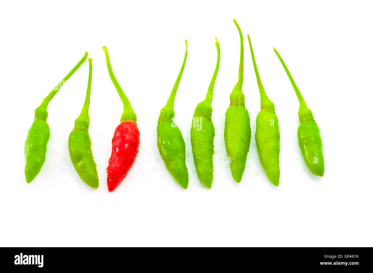 Red chilli among green chilli - Stock Image
