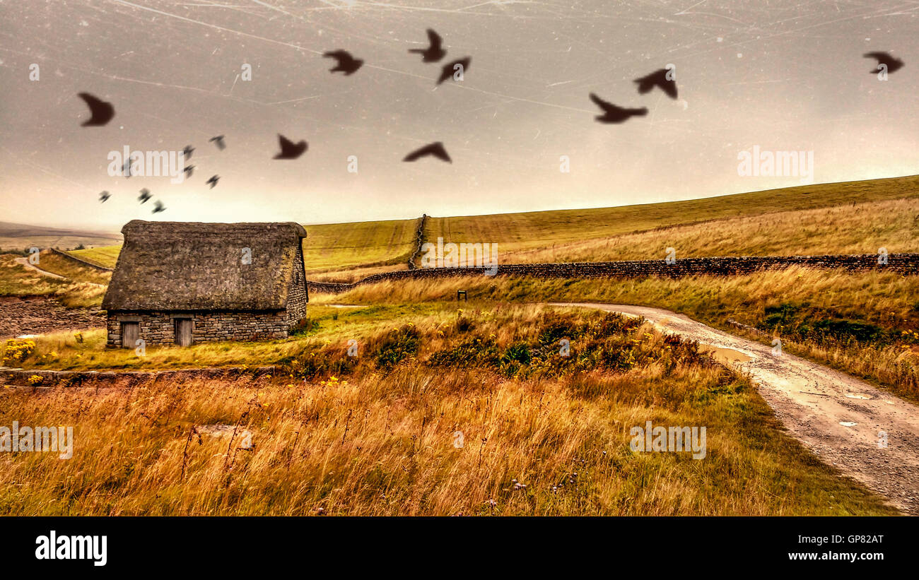 old shed by the lake - Stock Image
