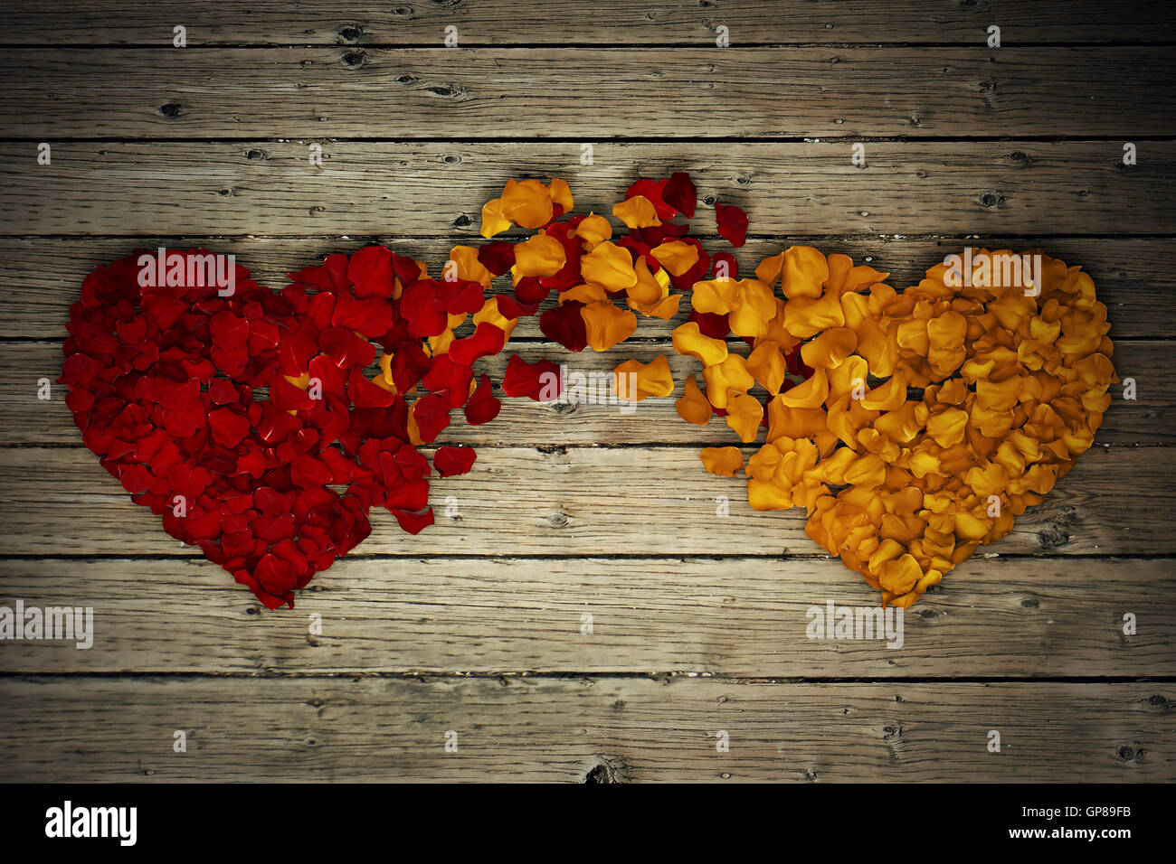 Two rose petal hearts connection on wood background. Romantic relationship concept. Attachment and love symbol, - Stock Image