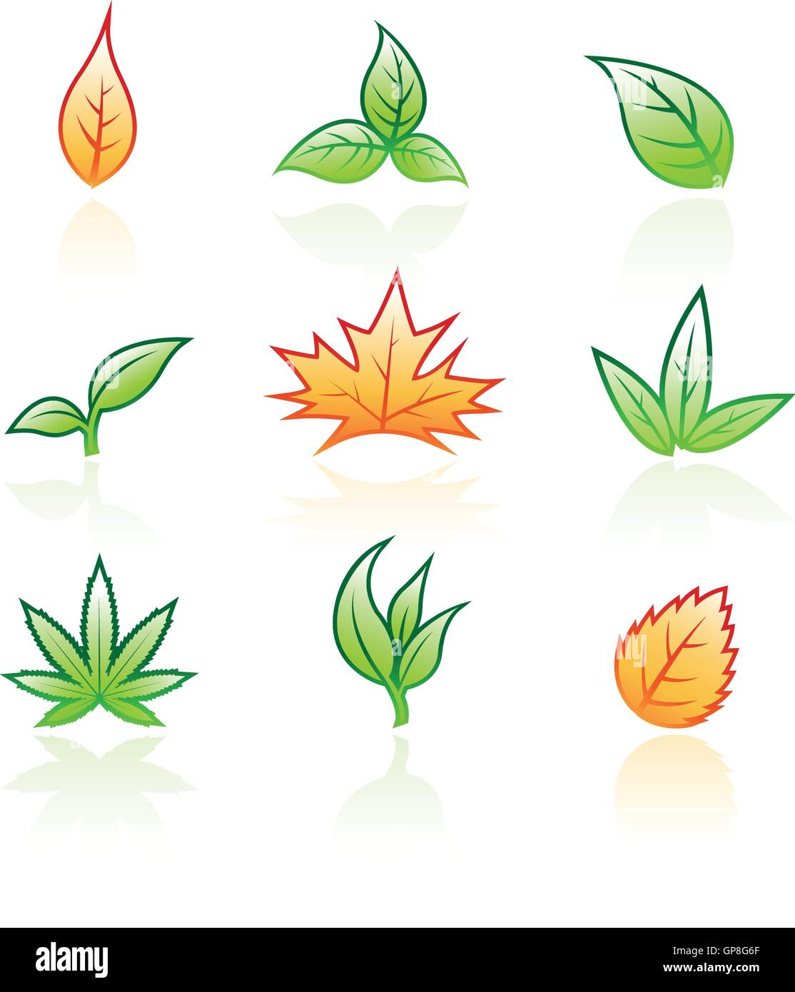 illustration of glossy leaves isolated on a white background - Stock Vector