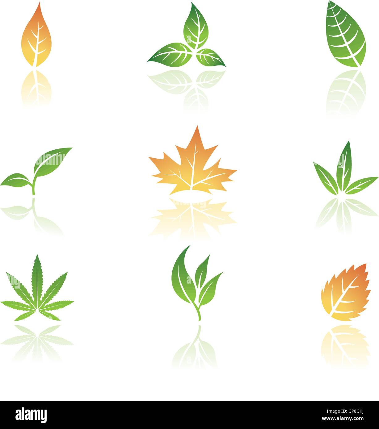 Leaves icons isolated on a white background - Stock Vector