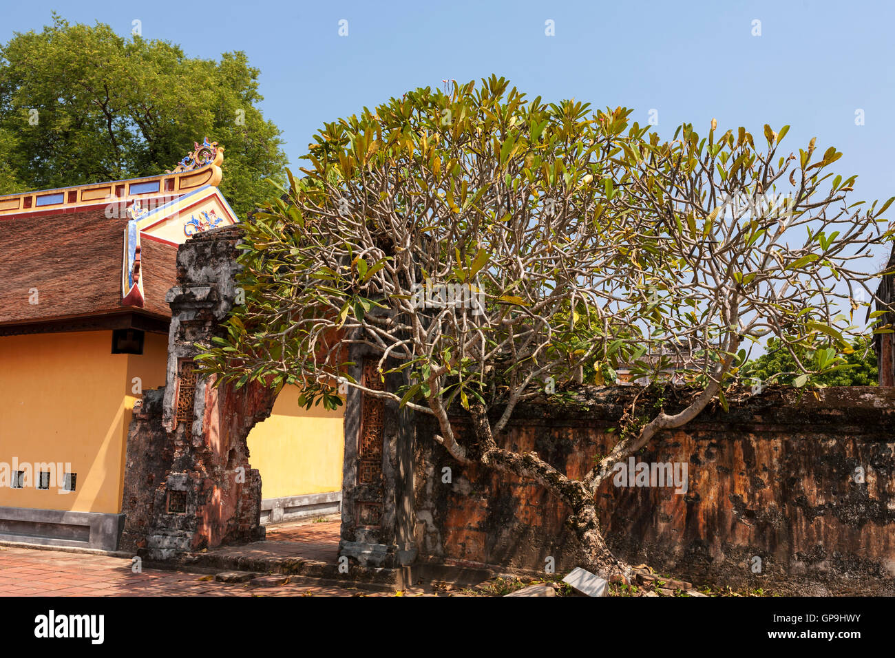 War-damaged archway, approach to Cung Dien Tho Palace, Imperial City, Hue, Viet Nam Stock Photo