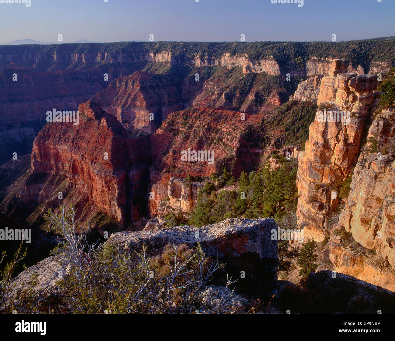 USA, Arizona, Grand Canyon National Park, View south from Point Imperial towards canyon depths and flat topped Walhalla - Stock Image