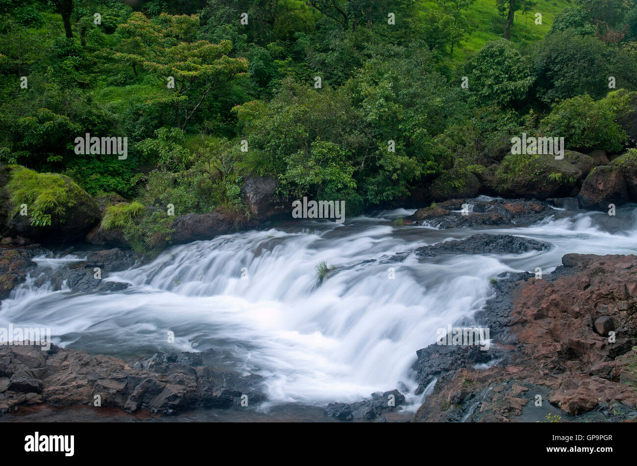 The image of Stream in Satara, Maharashtra, western ghats, monsoon, India - Stock Image