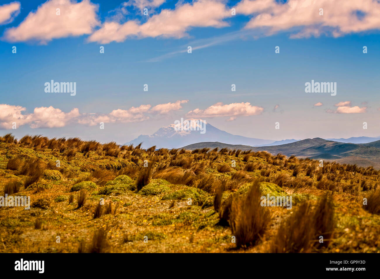National Park Cotopaxi Landscape, Ecuador, South America - Stock Image