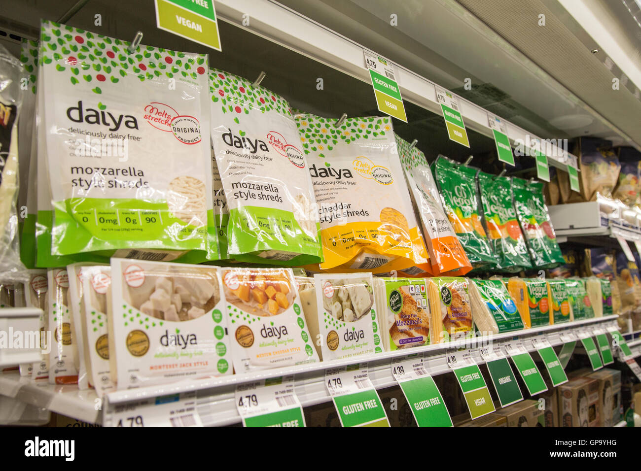 A display of Daiya dairy free cheeses in the refrigerator case at the grocery store. - Stock Image