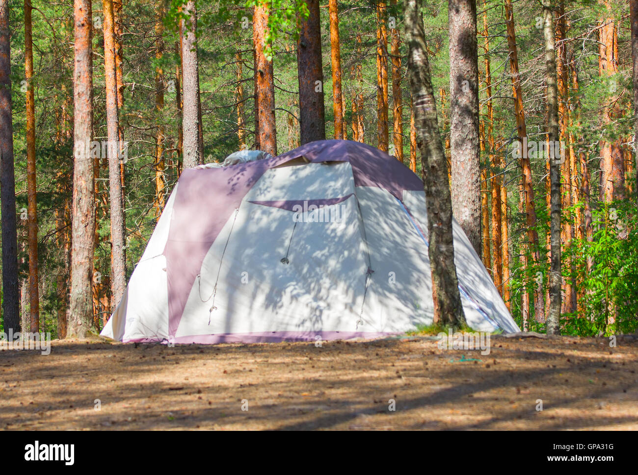 camping with a tent in the woods different options - Stock Image