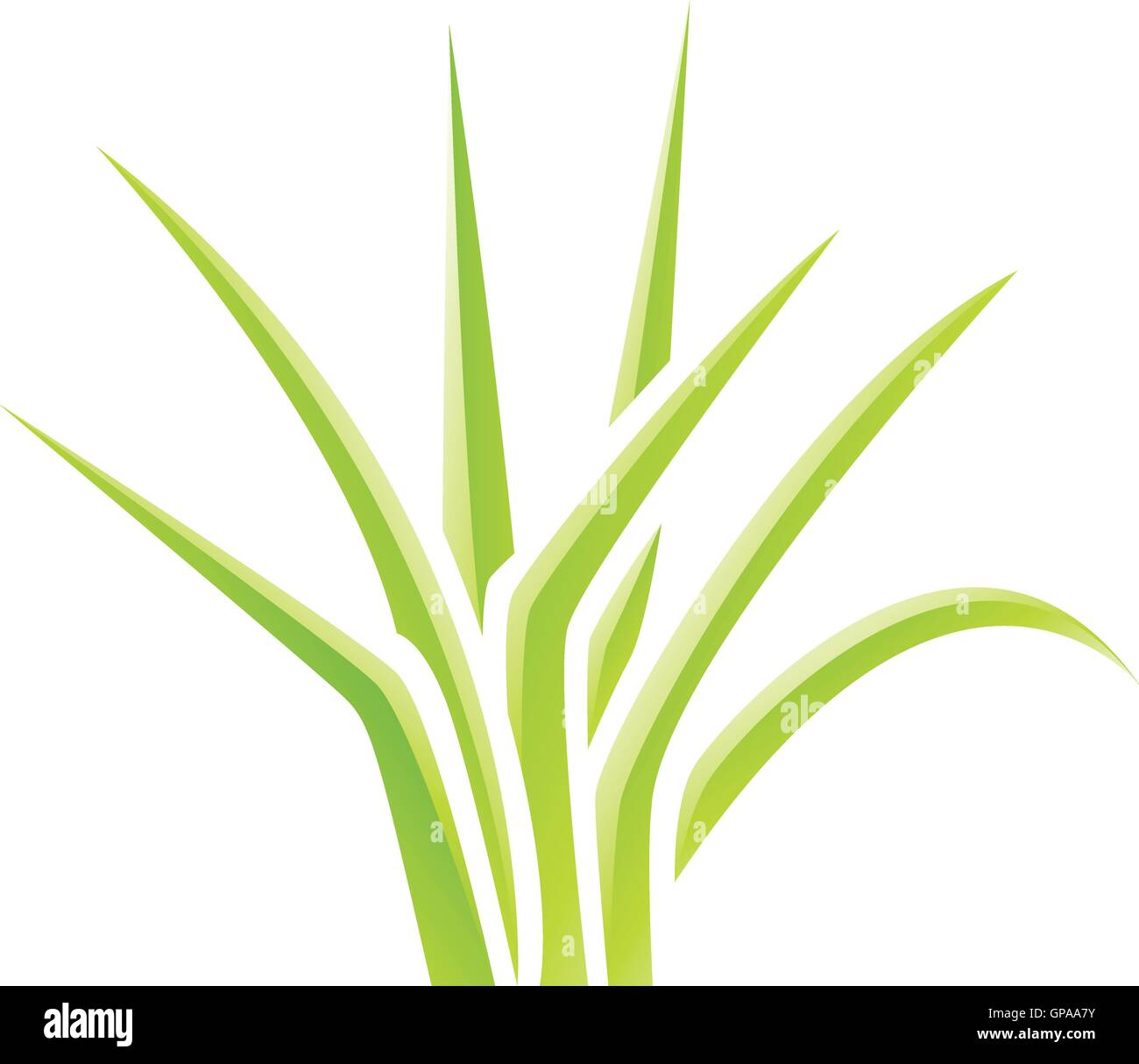 Illustration of Green Glossy Grass Icon isolated on a white background - Stock Vector