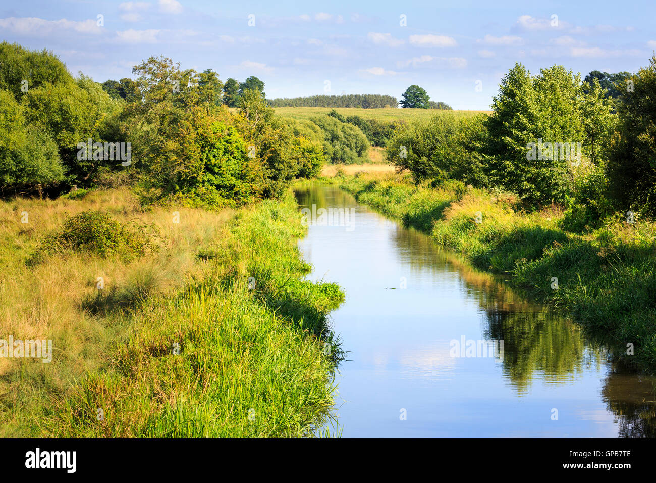 Pretty Surrey countryside on the Wey Navigation near Send, Surrey in summer - Stock Image