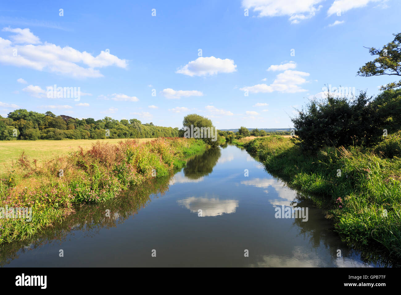 View of the Wey Navigation and Surrey countryside near Send, Surrey in summer with reflections of sky and clouds - Stock Image