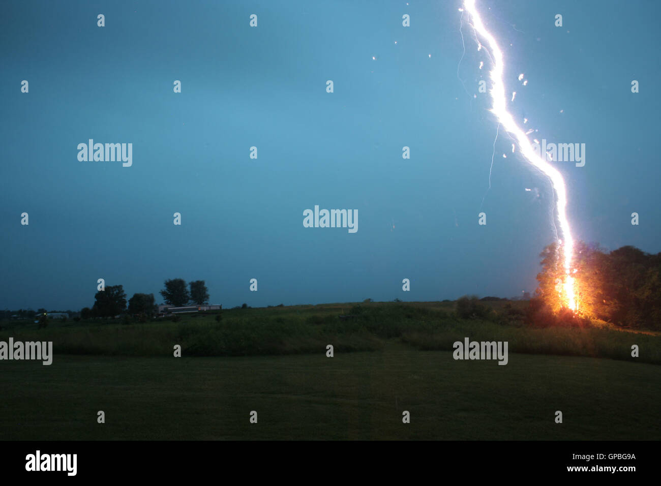 A bolt of lightning striking a tree in a field Stock Photo
