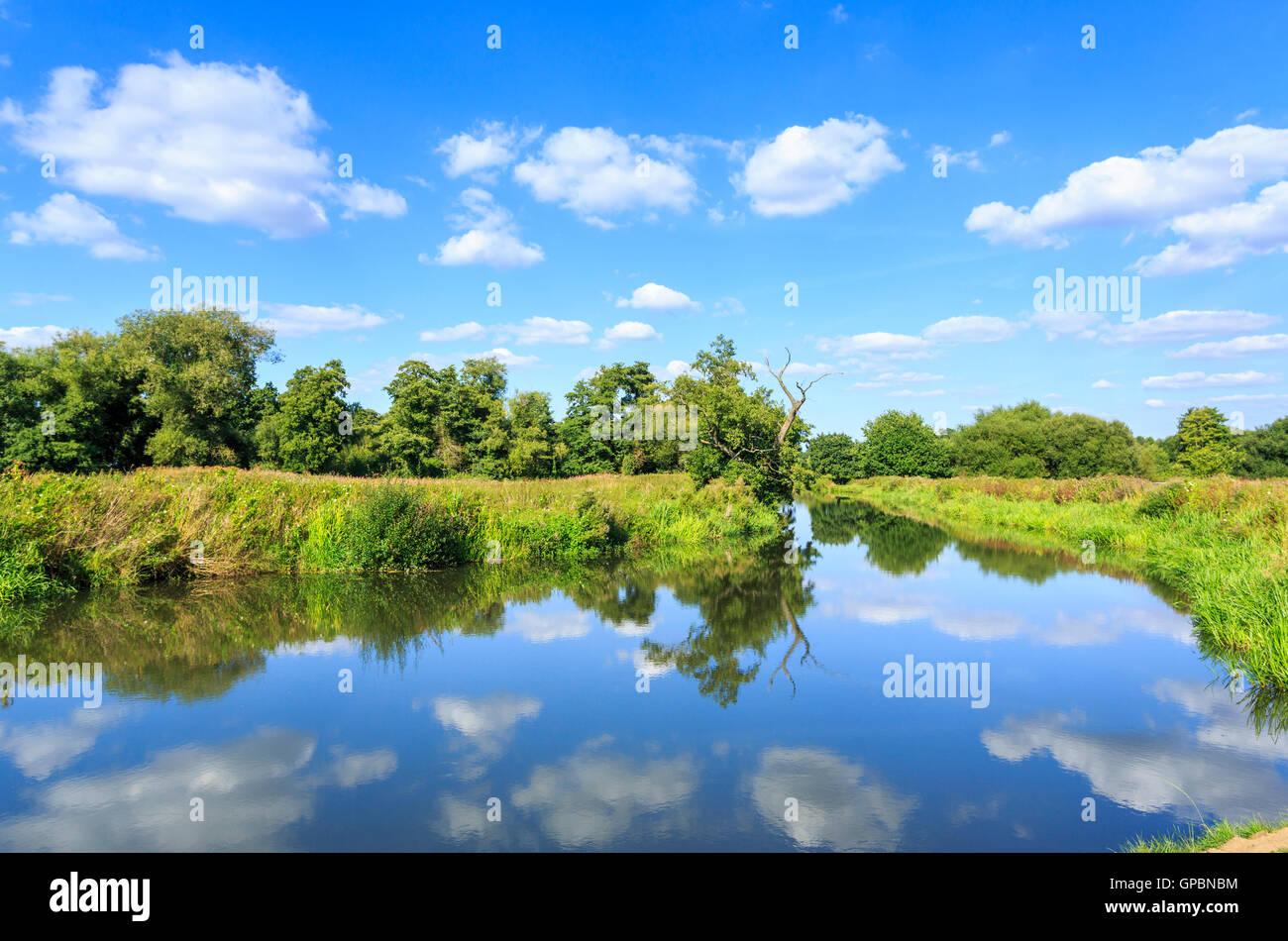 View of the Wey Navigation near Send, Surrey in summer with reflections of sky and clouds - Stock Image