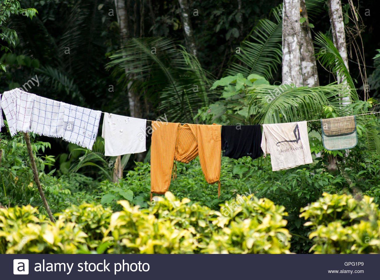 Clothesline with wet apparels drying under sun. Tambopata reserve, Amazon rainforest, Peru - Stock Image