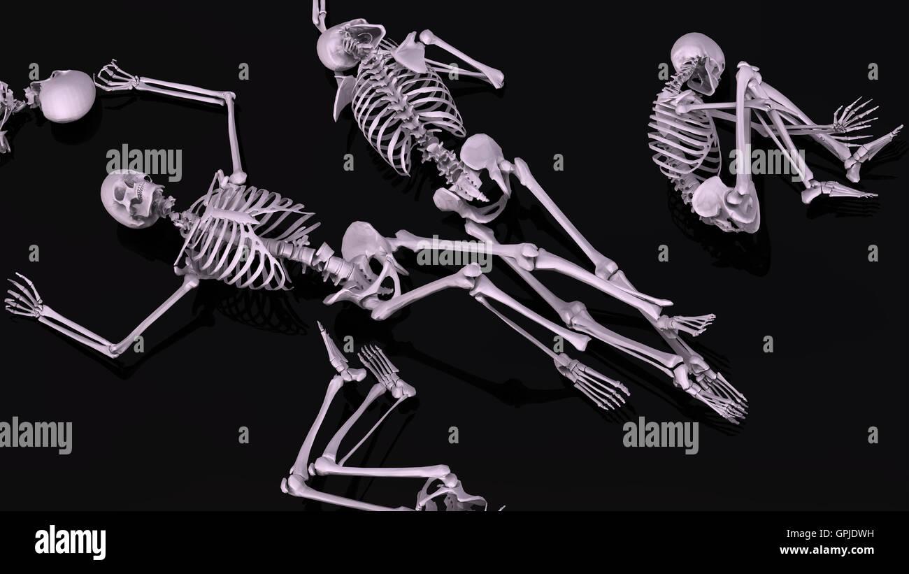 Human Skeletons Stock Photo 117190685 Alamy