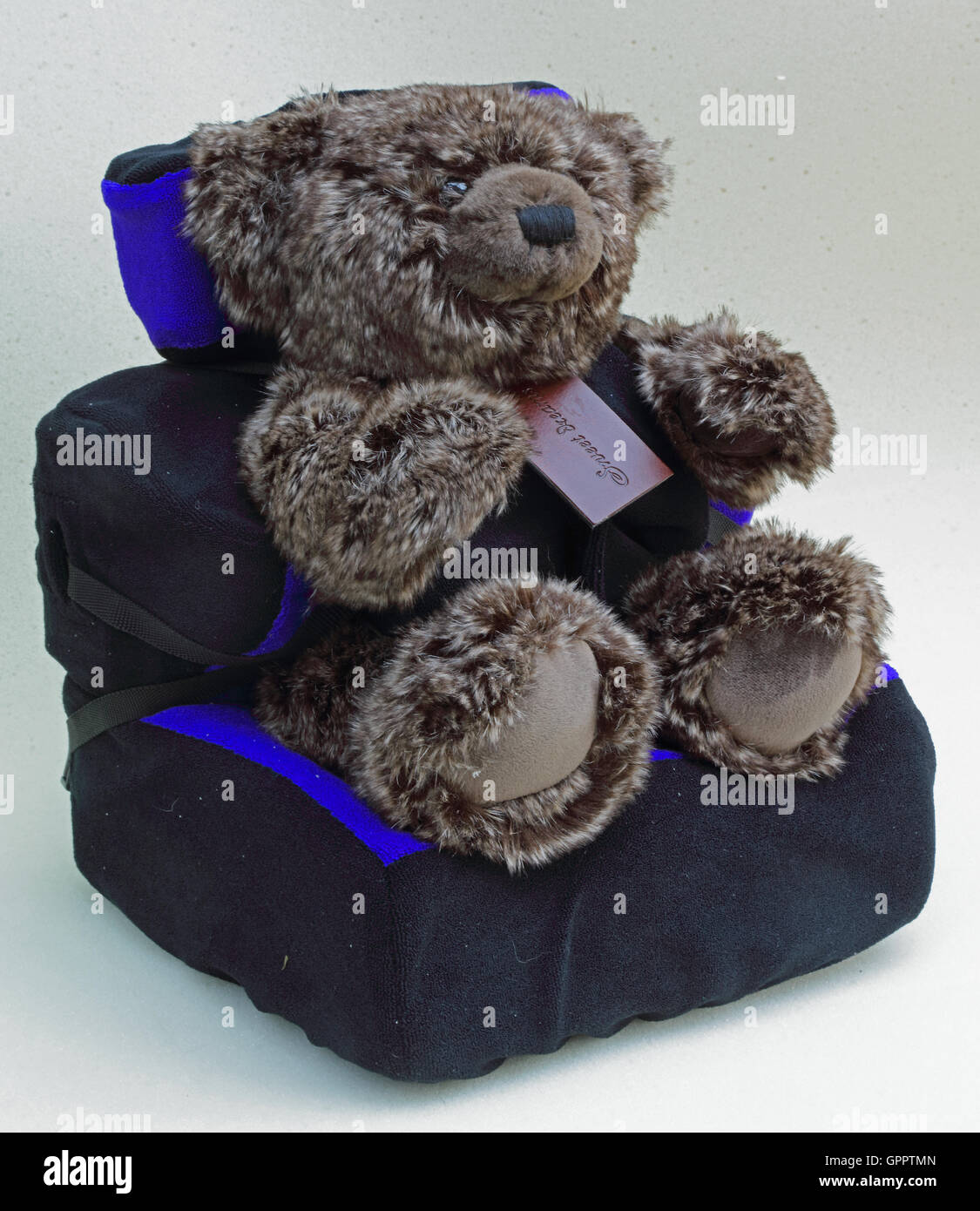 A cuddly Brown Teddy Bear sat and safely strapped and secured in a custom made seat normally associated with Wheelchairs. - Stock Image