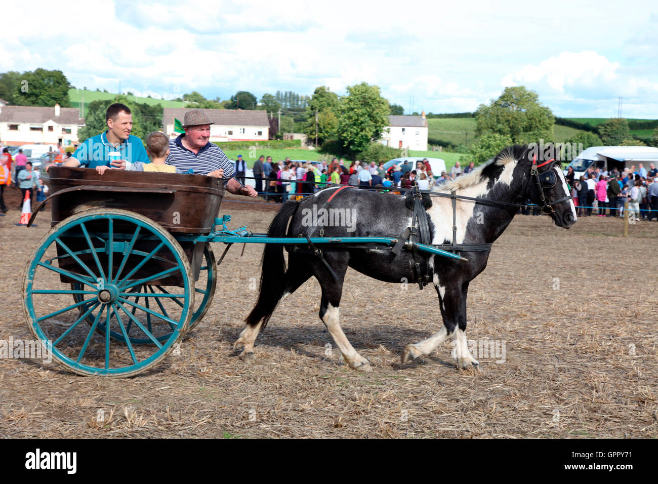 Pony and trap at Carrickmacross Vintage Club Field Day in aid of charity - Stock Image
