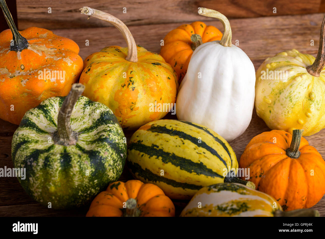 group of small decorative pumpkins on wood stock photo 117303779
