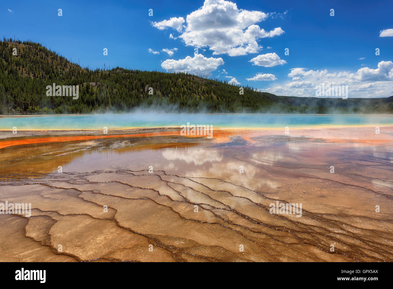 A famous geyser Grand Prismatic Spring in Yellowstone - Stock Image