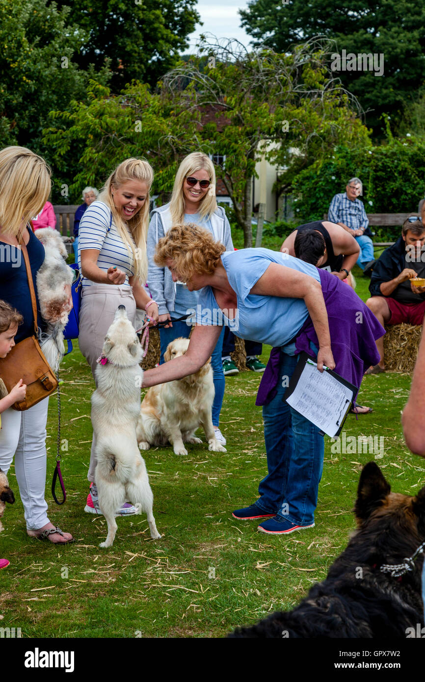 The Dog Show At The Annual Hartfield Village Fete, Hartfield, East Sussex, UK - Stock Image